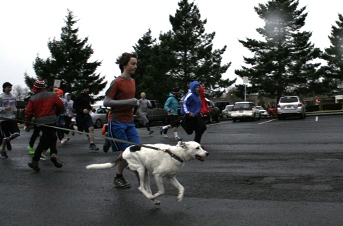 Turkey Trotters hit the pavement