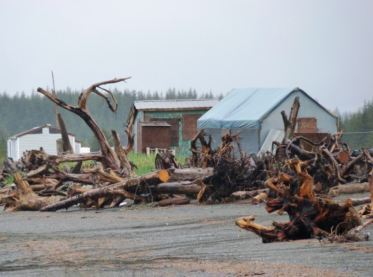 The beach fish camp at Strawberry Point is one of the areas of Yakutat where mining claims were staked. Ed Schoenfeld/CoastAlaska News