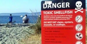 000000000000000000000000000000000000000000 -toxic-shellfish-large570-001