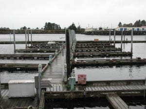 Slip holders at ANB harbor have all been relocated to other spots around Sitka as the city prepares to demolish it. (Rachel Waldholz, KCAW)