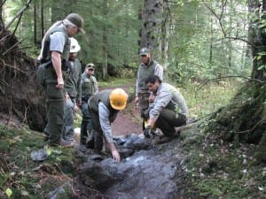 A National Park Service trail crew is working on the River View Trail in Sitka National Historical Park. (Rachel Waldholz, KCAW)