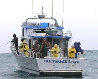Charter halibut clients on board the Crackerjack Voyager out of Seward. (Courtesy Crackerjack Sports Fishing/Alaska Sea Grant Program)