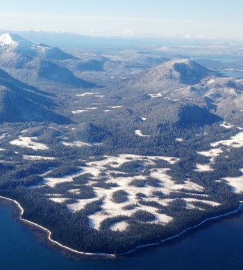 Part of the Tongass National Forest, on mainland between Wrangell and Petersburg, is seen in this view from an airplane. A Senate measure calls for the state to take over some Tongass timberlands. (Ed Schoenfeld/CoastAlaska News)