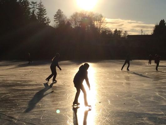 Swan Lake skating