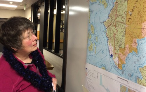 A map shows the state land that the Department of Natural Resources is proposing to sell, near Dog Point north of Sitka.