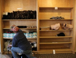 Sitka Fur Gallery employee stocks the shelves the night before the first cruise ship arrives. KCAW photo/by Emily Forman)