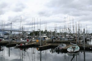 Sitka's ANB Harbor, home to many local trollers. (KCAW photo/Greta Mart)