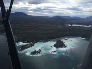 Herring spawn is clearly visible from the air in Krestof Sound on Monday (3-21-16). (KCAW photo/Emily Kwong)