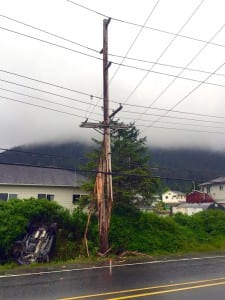 The 2002 Honda Pilot rests in the bushes next to the pole it broke in half. Up above are Sitka's 69kV transmission lines. (Sitka Electric Dept. photo)