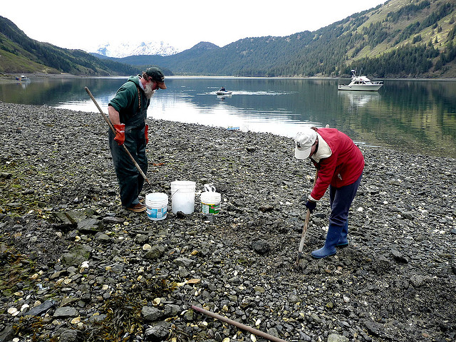 New Tribal shellfish lab scores a win for early detection
