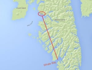 The whale was first seen about 40 miles southeast of Sitka in Whale Bay. (KCAW image)