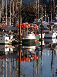 ANB rebuild, marine invasives in Gov's budget for Sitka