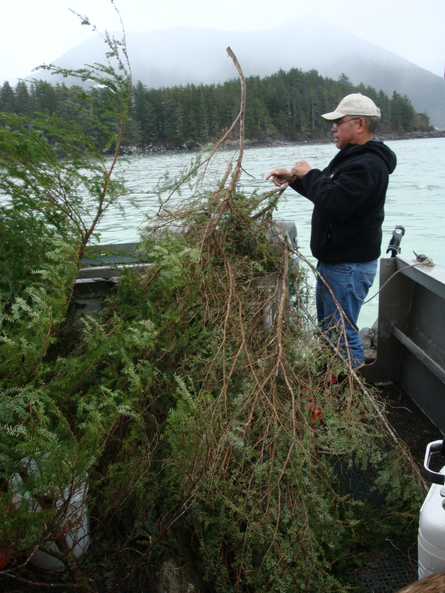 Sitka committee rejects subsistence permit idea