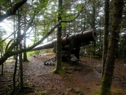 George Island's Big Gun silent, but no longer forgotten