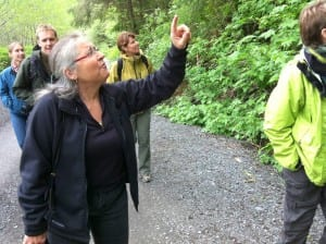 Sitka resident and Tlingit weaver Teri Rofkar takes staff from the National Museum of the American Indian up Blue Lake Road. The group was in town for field study, learning about the origins of many of the objects they keep track of in Washington, D.C. (KCAW photo/Ed Ronco)