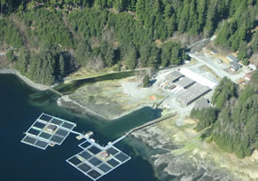 Medvejie Hatchery south of Sitka is one of the salmon enhancement facilities operated by NSRAA. (Photo courtesy of NSRAA)