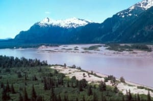 The Stikine River on the Alaska side of the border. Photo courtesy U.S. Forest Service.