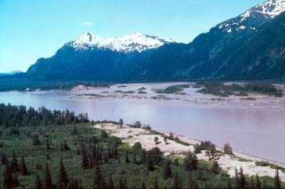 Stikine subsistence proposal advances