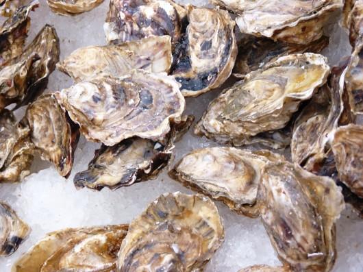 Ocean acidification threatens Alaska waters, workshop to be screened in Sitka