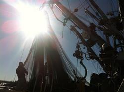 Herring fleet goes on 2-hour notice Monday
