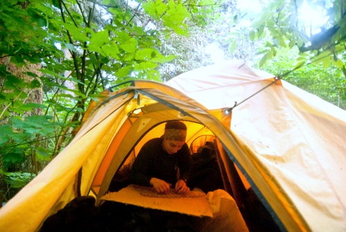 By day, Will returns to camp to record data. The number crunching happens at UAF in the fall. (SCS photo/Matt Dolkas.)
