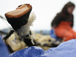 Seiners try co-op to finish Sitka herring season