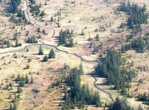 The Yakutat forelands just east of the city. Gold claims were staked for similar areas. Ed Schoenfeld/CoastAlaska News