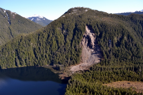The slide at the head of Redoubt Lake, photographed in late May. The lake itself is to the left; the new lake is flooding the wooded area to the right. At present, the extent of the flooding is about 55 acres. (USFS photo)