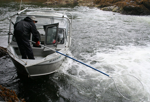 Fish & Game to survey Sitka's subsistence harvest