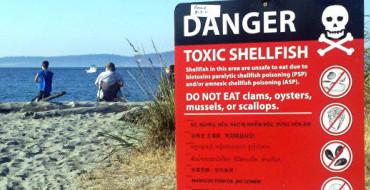 Shellfish poisonings sicken two Sitkans