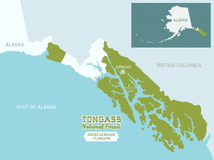The Tongass National Forest could resume allowing logging in roadless areas under a court ruling. But it won't happen immediately -- or at all. (U.S. Forest Service Photo)