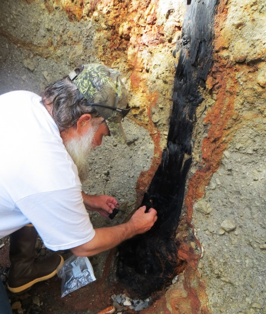 Forest Service Geologist Jim Baichtal samples the charcoal tree found embedded in pumice on Kruzof Island, near Sitka. (Courtesy Kitty LaBounty)