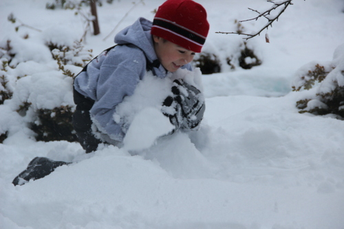 After two days of snow, Sitka is bracing for another 6-12 inches on Wednesday night