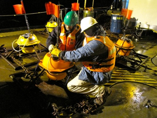 Ocean floor sensors yield clues on seismic activity