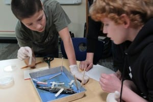Tristan Ballesderoz and Kyler Newton label a dissected herring during Knowledge of Herring Camp, on March 21. (KCAW photo/Rachel Waldholz)