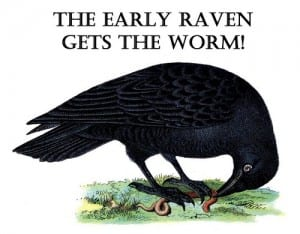 ravenworm_web