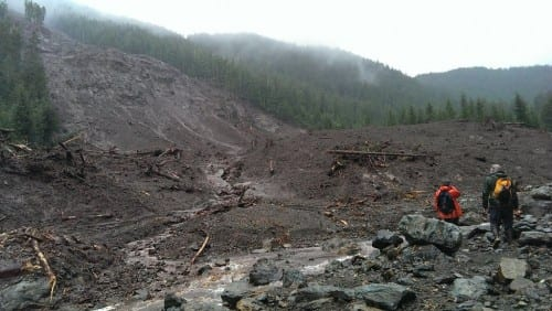 The main area of the slide encompasses an area of roughly 100 acres. (USFS photo)