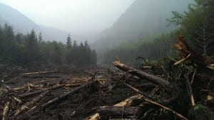A bridge, three fish ponds, and two new culverts were buried by debris. (USFS photo)