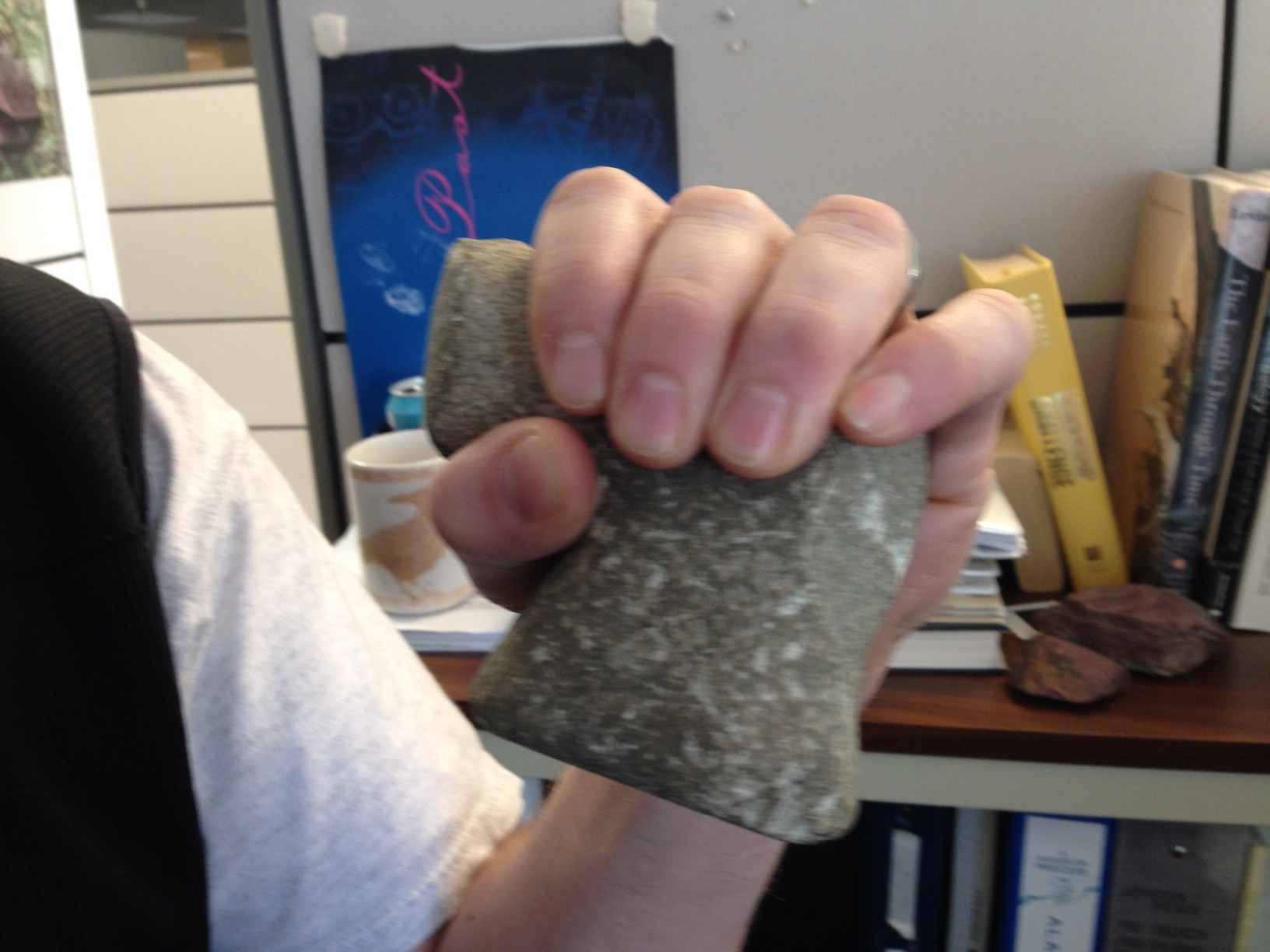 Improbable archaeology: Stone tool found in Sitka landslide