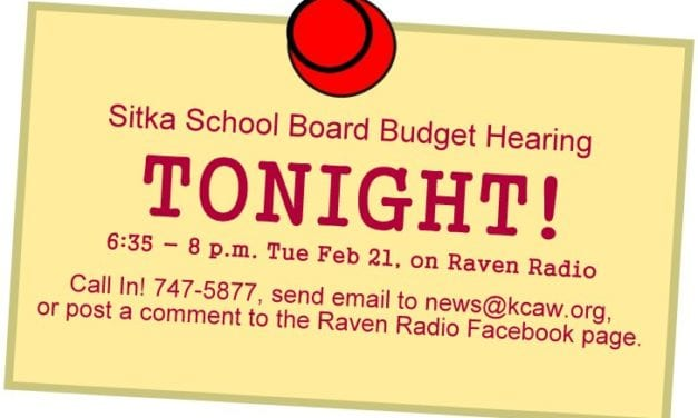 FULL AUDIO: School district budget hearing, February 21, 2017