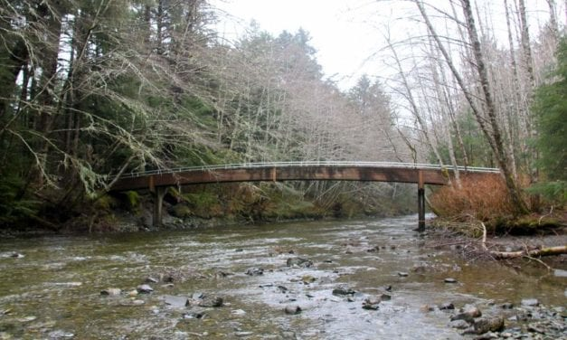 Salmon viewing bridge undergoes replacement