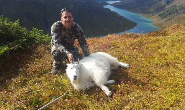 With smaller zones, ADF&G seeks to stabilize mountain goat hunt