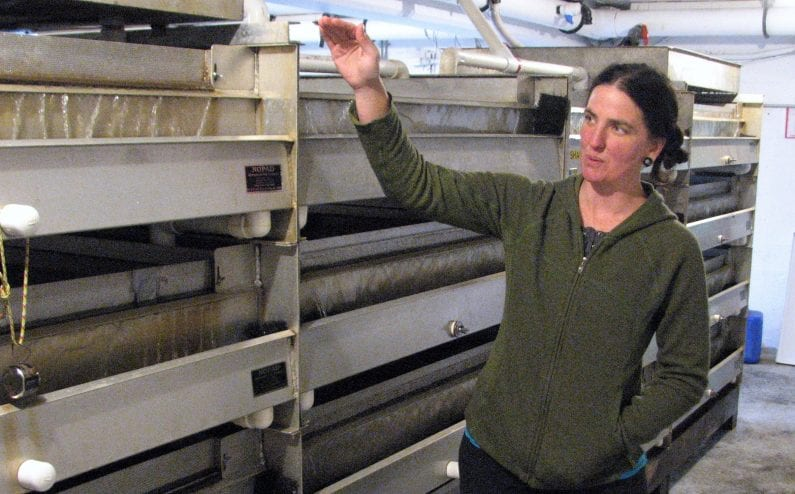 Sitka Sound Science Center Aquaculture Director Angie Bowers explains operations in the Sheldon Jackson Hatchery's egg room Sept. 14, 2017. (Ed Schoenfeld/CoastAlaska News)