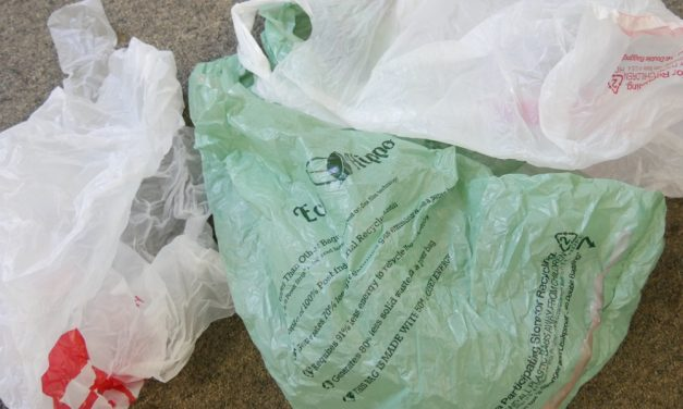 Listen: Raven News hosts election forum on plastic bag ban