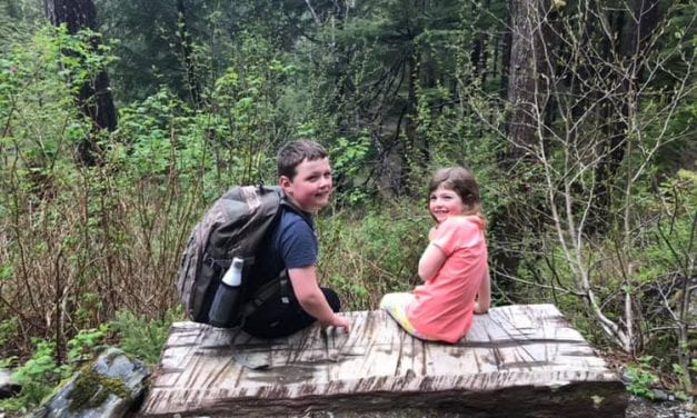 Family encounters aggressive bear on Heart Lake Trail
