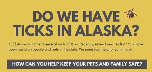 Alaska vets tackle uptick in tick population