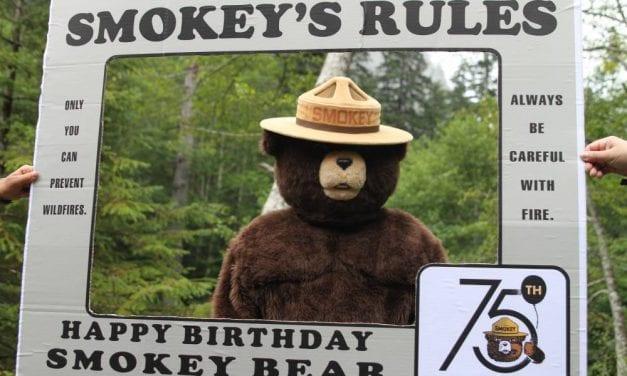 CorvidEYE: Smokey celebrates 75 years