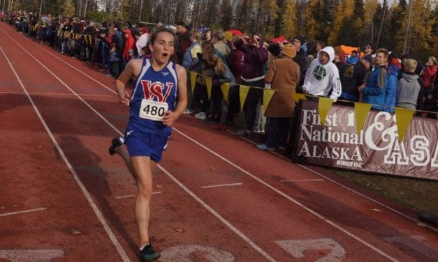 Wolves, MEHS run well at state XCountry