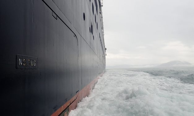 Researchers, marine pilots work to prevent vessel strikes from killing Alaska whales